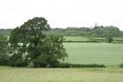 Huntsham: near PerrottÂ's Farm