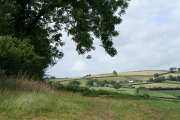 Tiverton: on Barton Hill