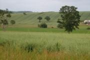Creedy valley from South Lodge, Shobrooke Park
