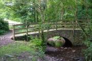 Barberry Water Bridge