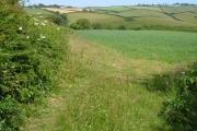 Across Strawberry Valley from near Fast Rabbit Farm