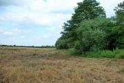 Set-Aside Farmland