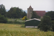 Capel church across a field of wheat.