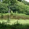 Sheldon: pond near Southcott Farm