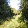 Saddler's Lane, Gulling Green