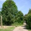 Footpath at Brook Green