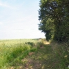 Footpath to Great Whelnetham