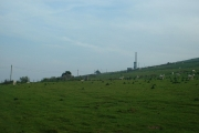 Farmland looking towards the TV Mast