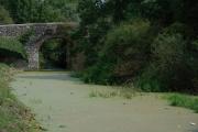 Disused Lagan Navigation, Goudy Bridge