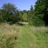 Footpath to Brockley Green