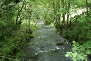 Brompton Regis: the River Haddeo