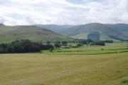 Farmland, Manor Valley