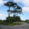 Spreyton: near Week Farm