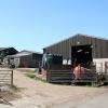 Bow: West Hillerton Farm