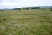 Scrubby farmland on Gwastadros