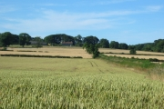 View across arable land to farm at Cawthorne