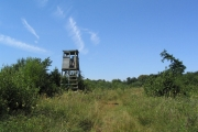 Fire tower, Careby Wood