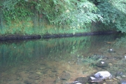 River Tavy at Harford Bridge campsite