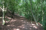 Path from Singret to Llay
