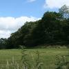 South Tawton: near West Cullaford