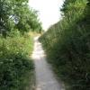 Climb to the Walk