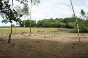 Sampford Courtenay: near Youldon Bridge