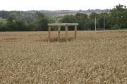 View across Wheat Fields