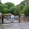Curious gates