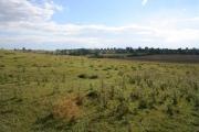 Farmland near Owston