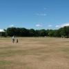 Parched Grass at the Duthie Park