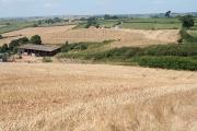Sandford: towards Swelthills Farm
