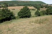 Farmland to the south of Pentre Farm