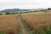 Farmland south-east of  Axmouth