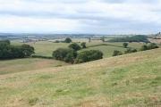Shobrooke: towards the Creedy valley