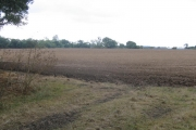 Ploughed field between M11 and railway
