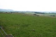 Cardross- Dalreoch, Farmland