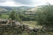 Towards Hayfield