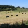 Hay bales near Soughton  Farm