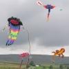 High Force Kite Festival