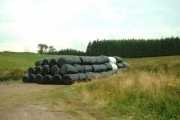 Silage and Woodland