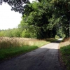 Road leading to Hales