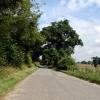 Road near Raveningham