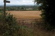Newhouse Farm, Hanley Child