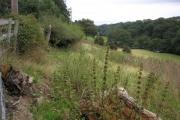 Farmland on Nant-y-Glyn Road