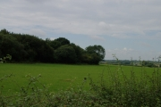 Farmland alongside Boarstall Wood