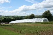 Stockland: Royal Oak Farm