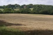 Scrappers Hill Farm