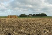 Wantage Field