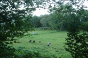 Farmland near Pukwana