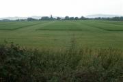 Turf farm, near Didbrook